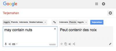 hasil google translate
